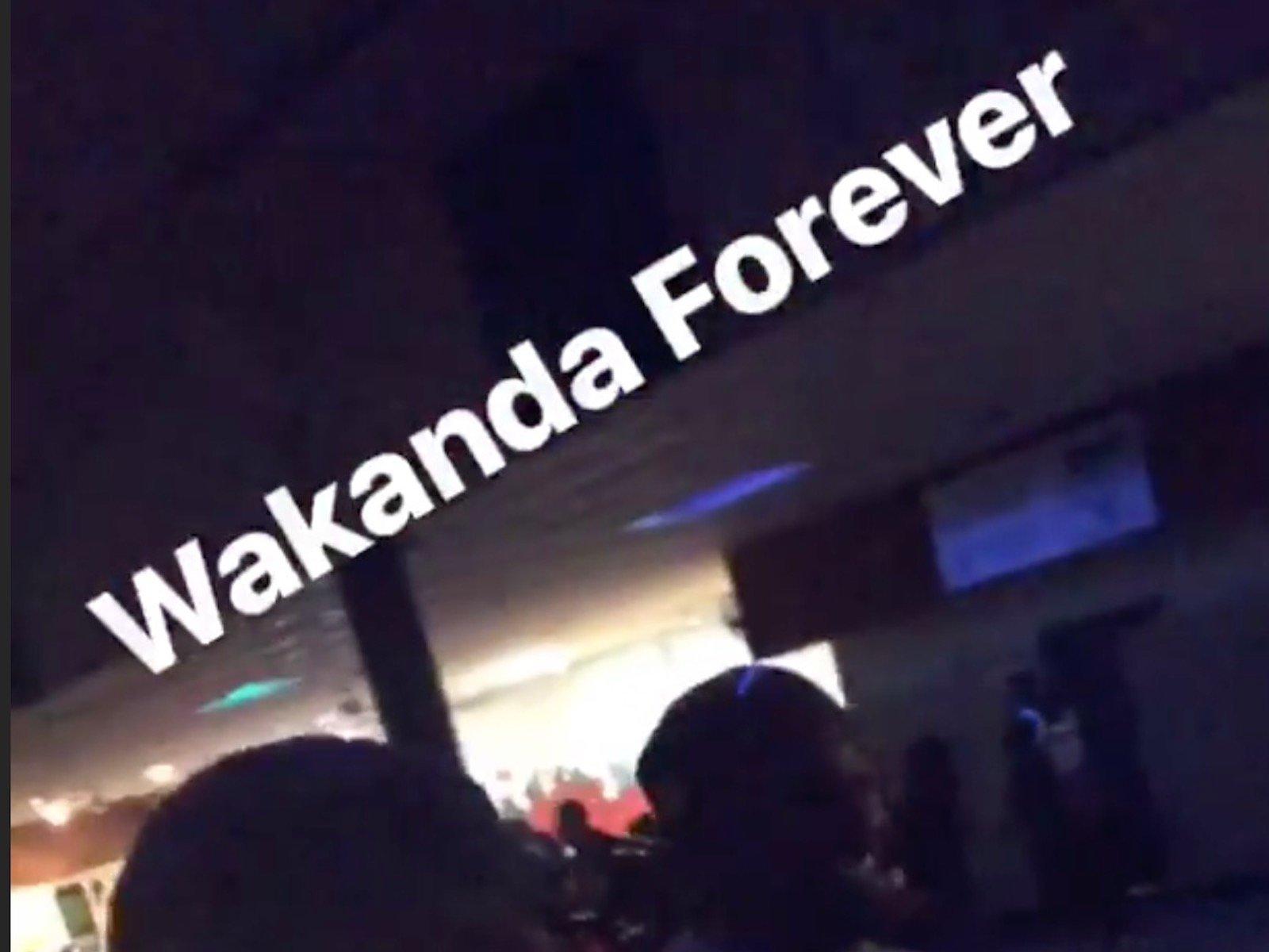 Wakanda Forever LeBron James