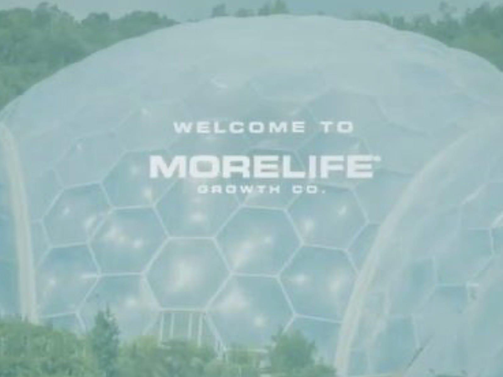 Drake More Life 11-6-19