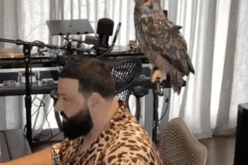 DJ Khaled Producer Owl